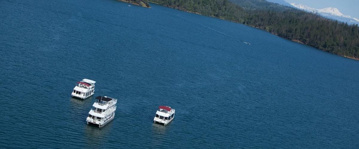 JV-fleet-on-Shasta-Lake-1147x600